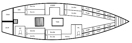 Apollo Maxi Floorplan