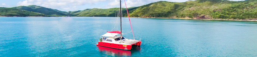 Tongarra, Red Cats, Sailing Whitsundays