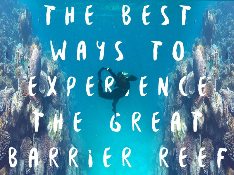 The best way to experience the Reef
