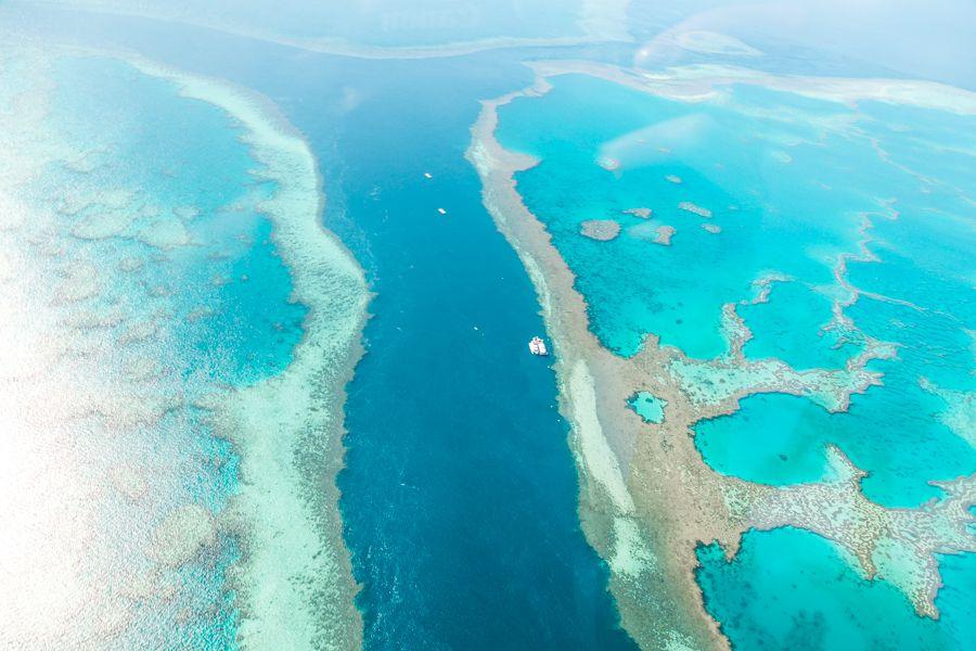 Hardy Reef pontoon