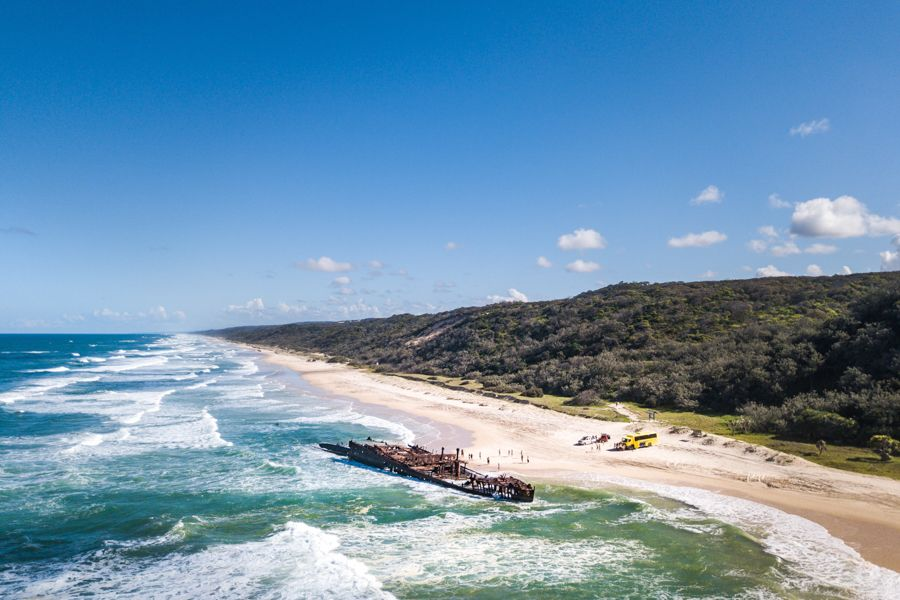 Fraser Island, Cool Dingo, Driving from Sydney
