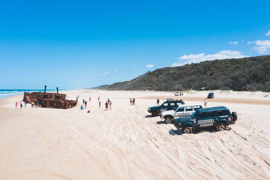 Drop bear adventures Fraser Island