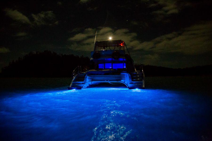 Powerplay Underwater Lights