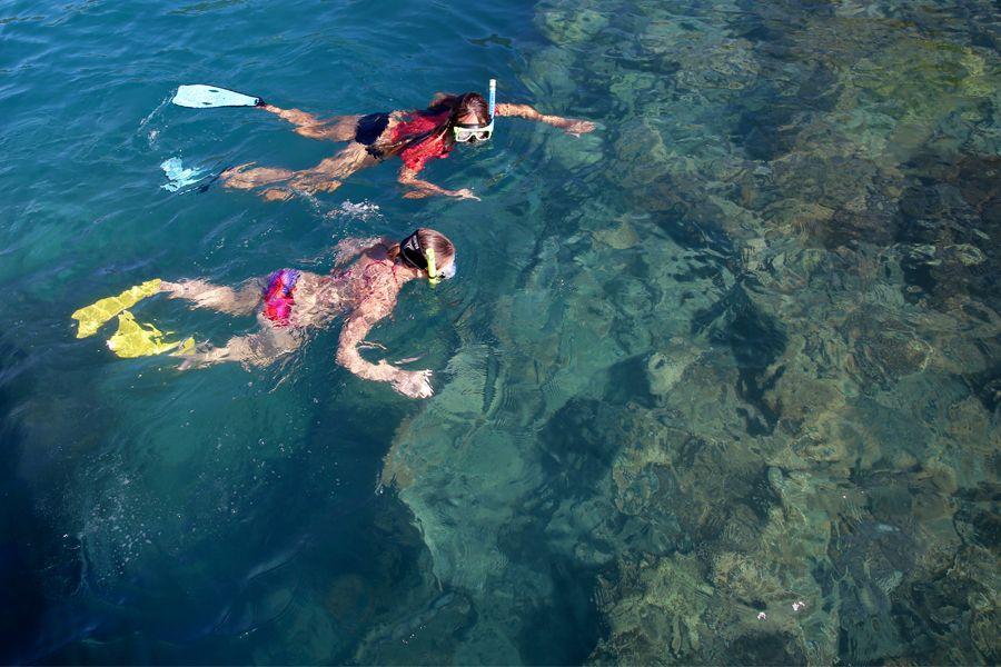 snorkelling, daydream island