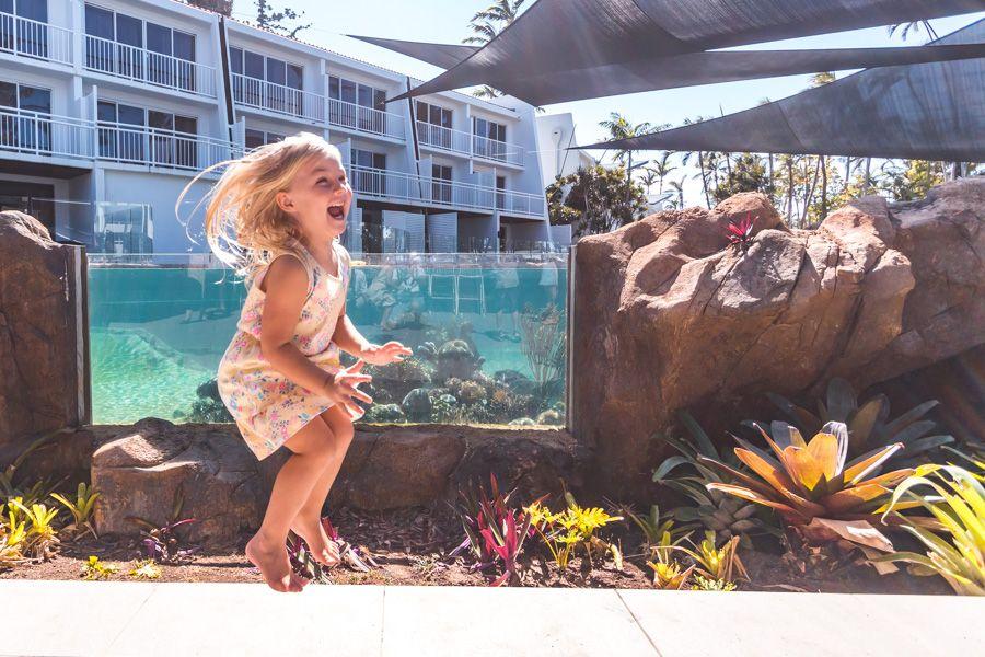 aquarium , daydream island