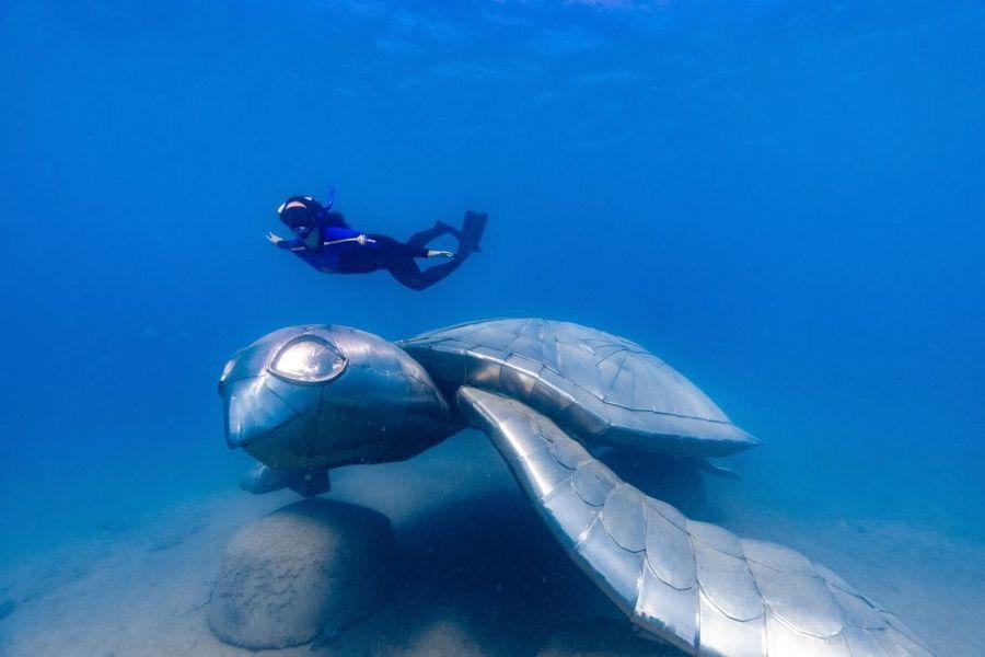 Underwater Sea Trail