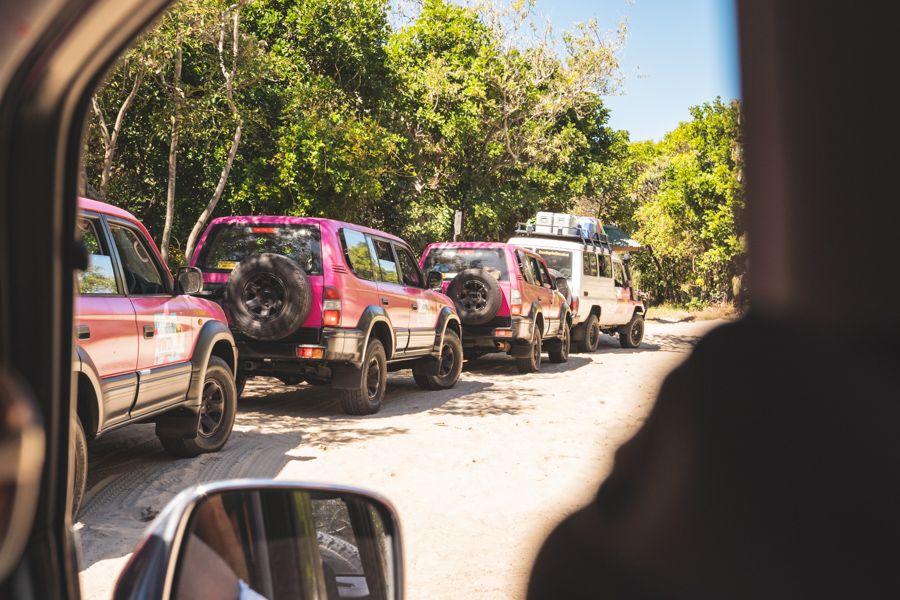 Fraser Dingoes Tag Along Tour Fraser Island K'gari
