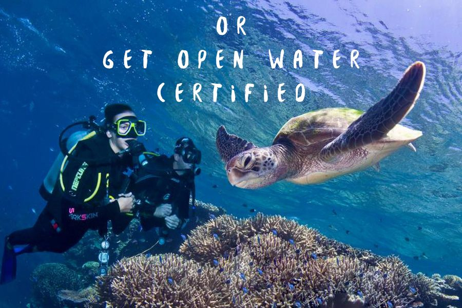 Open Water Courses Whitsundays