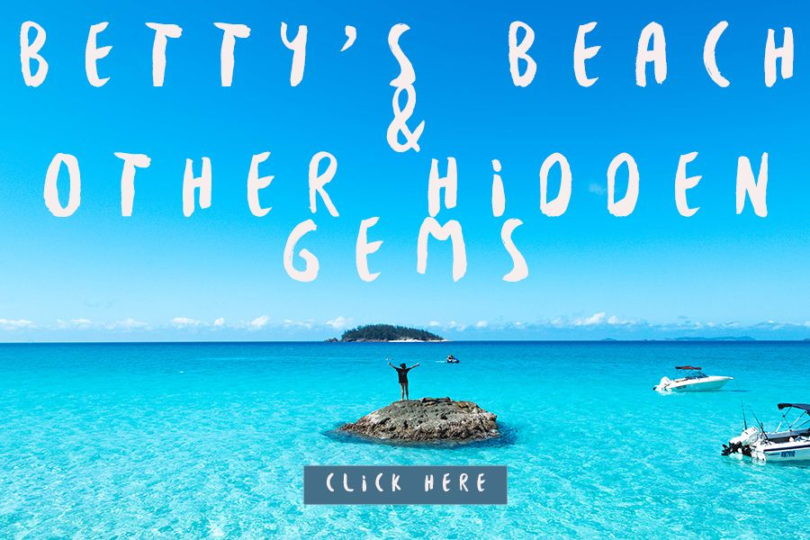 Bettys Beach and Other Hidden Gems