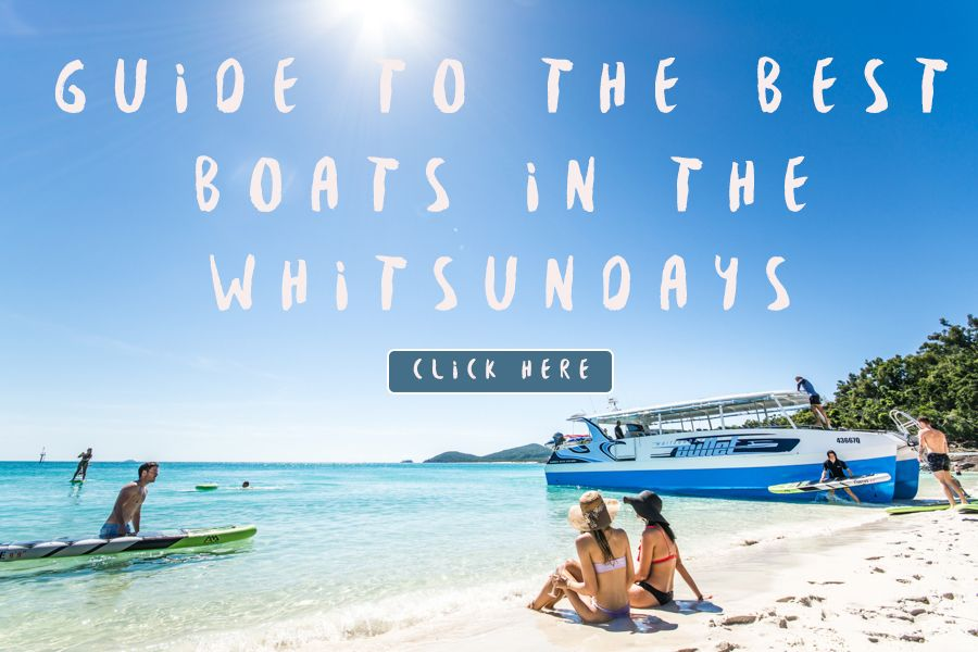 Choosing the Right Whitsundays Tour