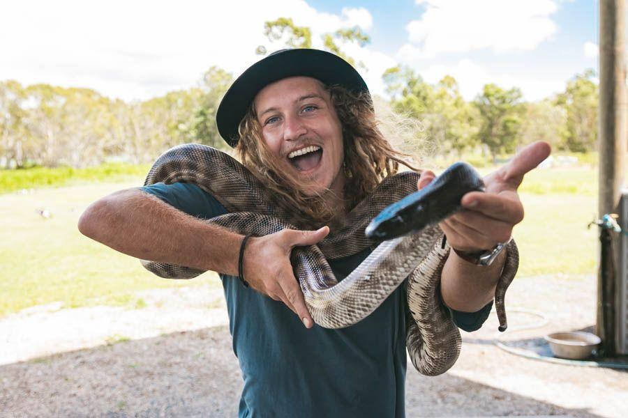 snakes, whitsundays