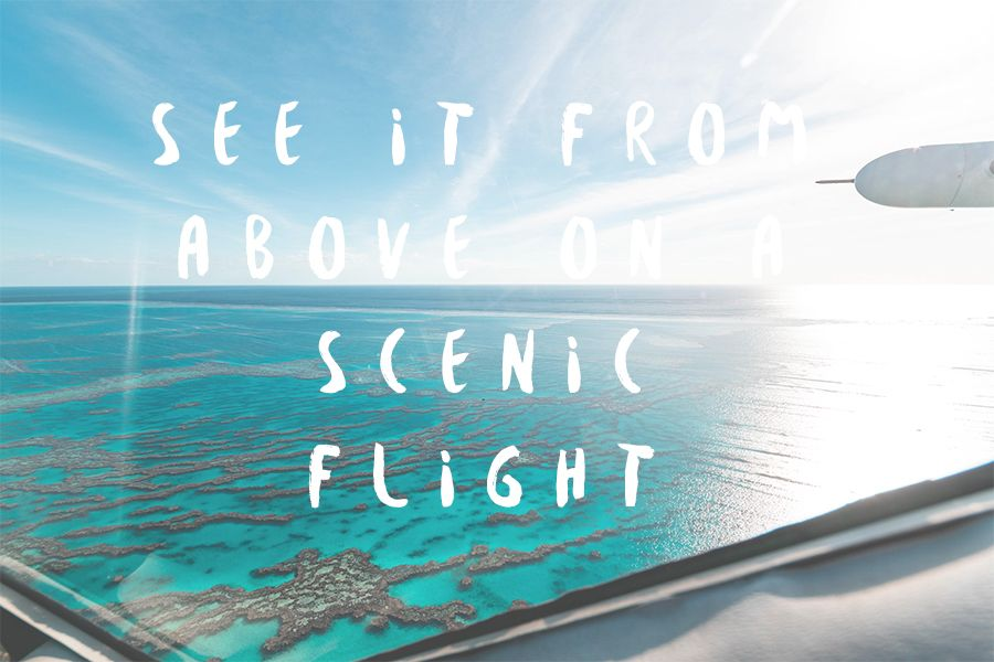 Scenic flights great barrier reef