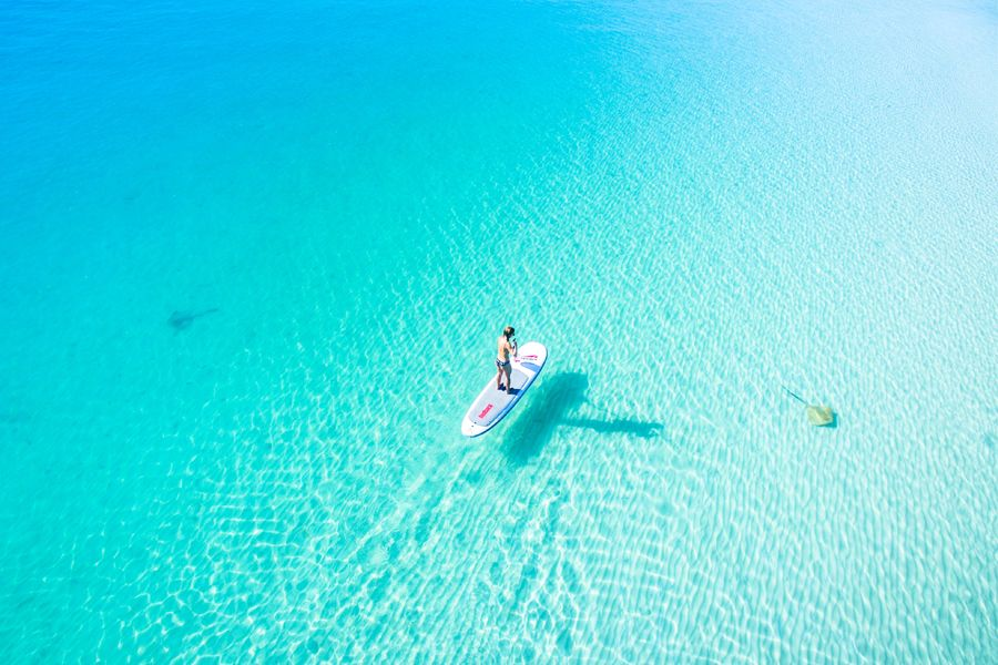 paddleboard, whitehaven beach