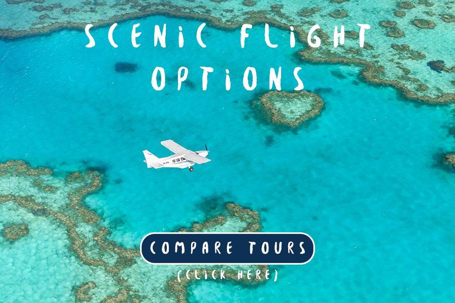 Scenic Flight Options