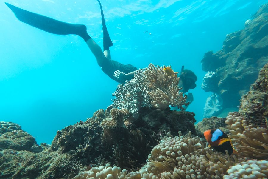 Is the Great Barrier Reef dangerous? - Sailing Whitsundays