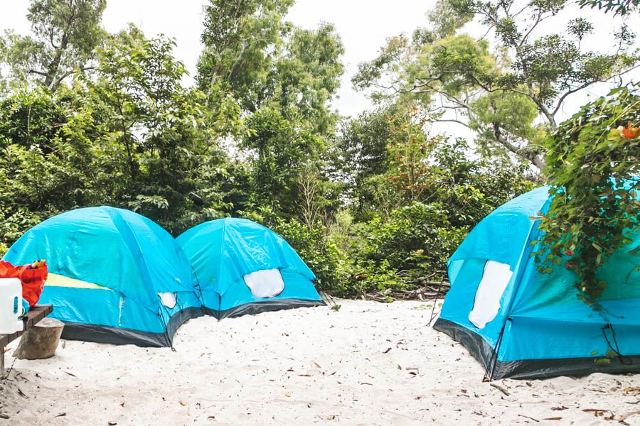 camping, whitehaven