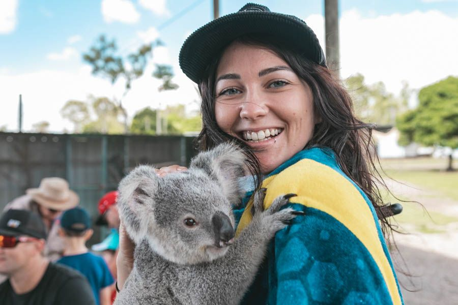 Koala hugging photo