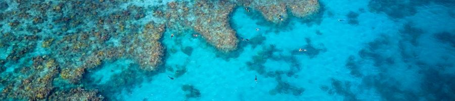 Cairns Reef Sites