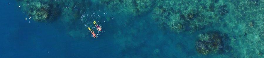 Snorkel Whitsundays Getaway