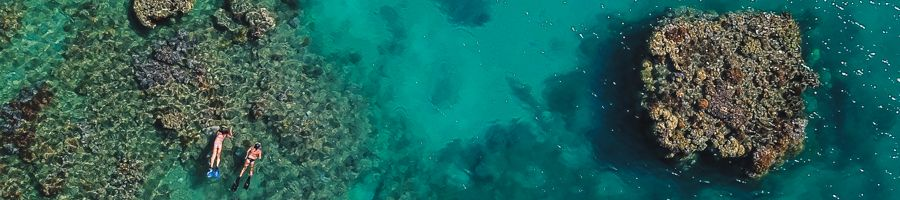 Snorkelling Whitsundays on Wings
