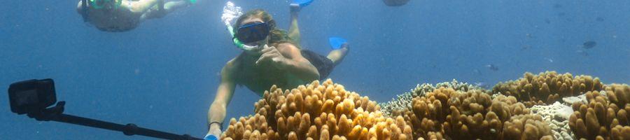 snorkelling, selfie, great barrier reef