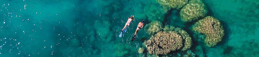 whitsunday bliss, snorkelling