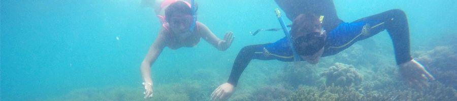 Entice Snorkelling Great Barrier Reef
