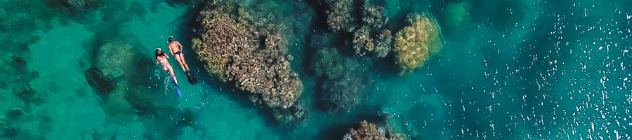 Snorkelling in the Whitsundays, coral sea